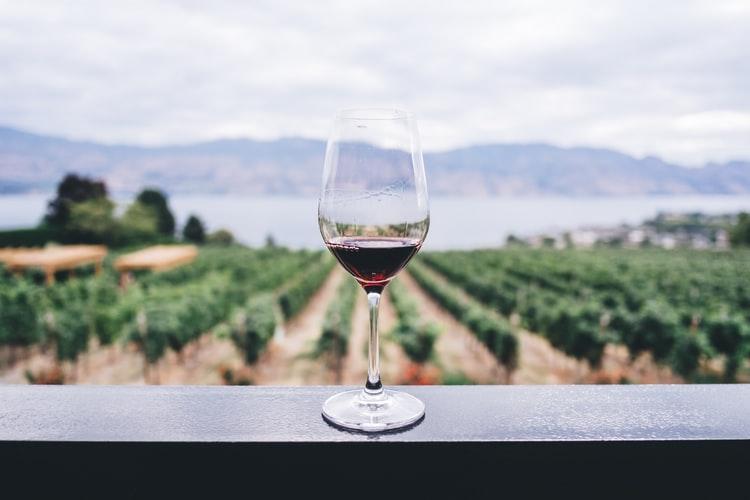 Materials Used to Make Wine Tasting Glasses