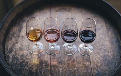 Why You Must Not Drink Wine on an Empty Stomach